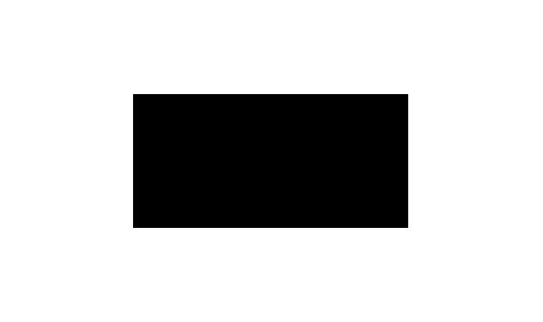 rokiskio mesine