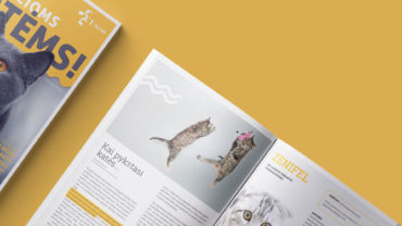 magazine design services
